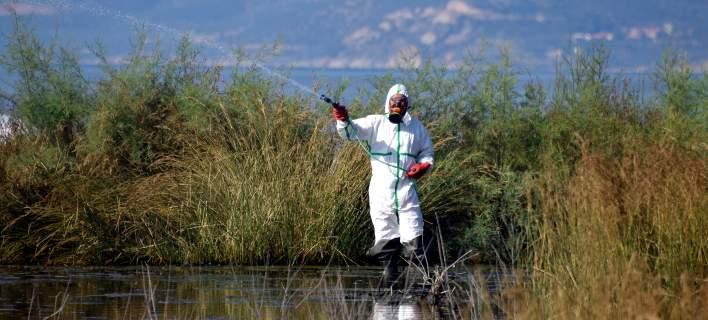Ο ΠΟΥ ανησυχεί για τον ιό του Δυτικού Νείλου στην Ελλάδα -Τρίτη σε κρούσματα στην ΕΕ η χώρα