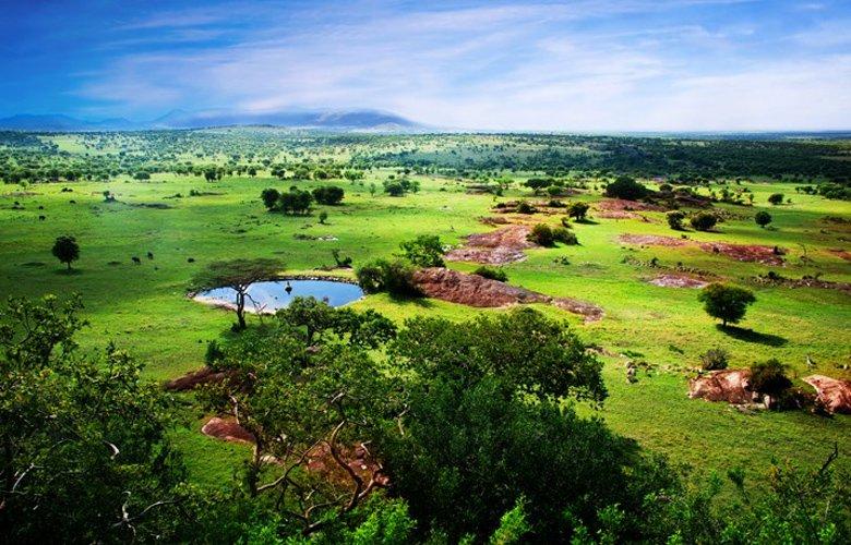 Τανζανία, ανεπανάληπτη εμπειρία στην αφρικανική Εδέμ