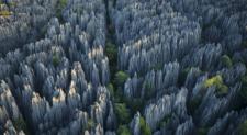 Το πέτρινο δάσος που έφερε τον… Άρη στη Γη!