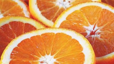 Πορτοκάλι: Από τη Λακωνία επενδύουν στην Αίγυπτο!